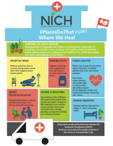 Infographic on Plants and Health