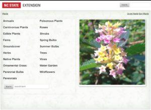 Landing page for plants.ces.ncsu.edu