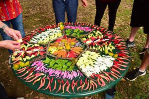 Mandala at Bullington Gardens